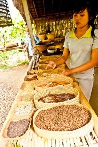 Bali Putrina Food Plantation