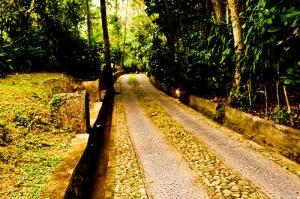 Driveway Alam Indah