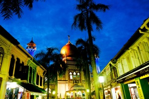 Arab Street, like many of Singapore's other districts is amazing by night and day.  Quirky shops selling unique items, great restaurants and cafes to sit and while away the hours.